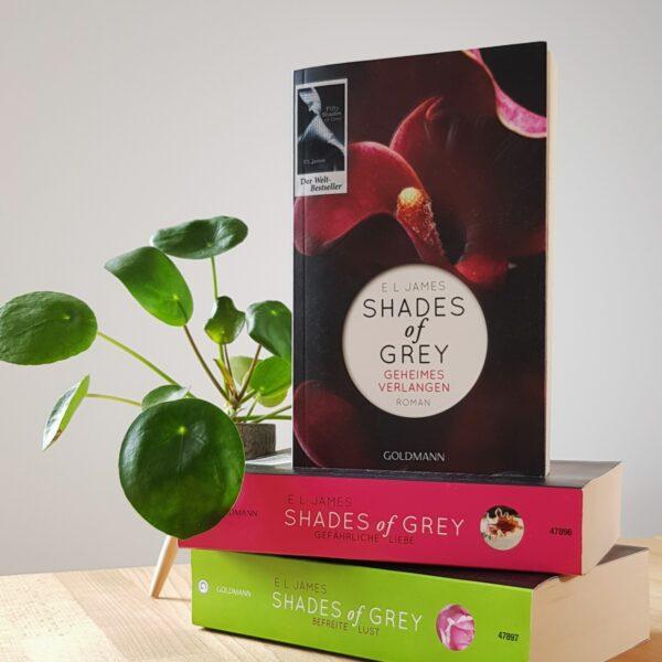 Shades of Grey – Geheimes Verlangen